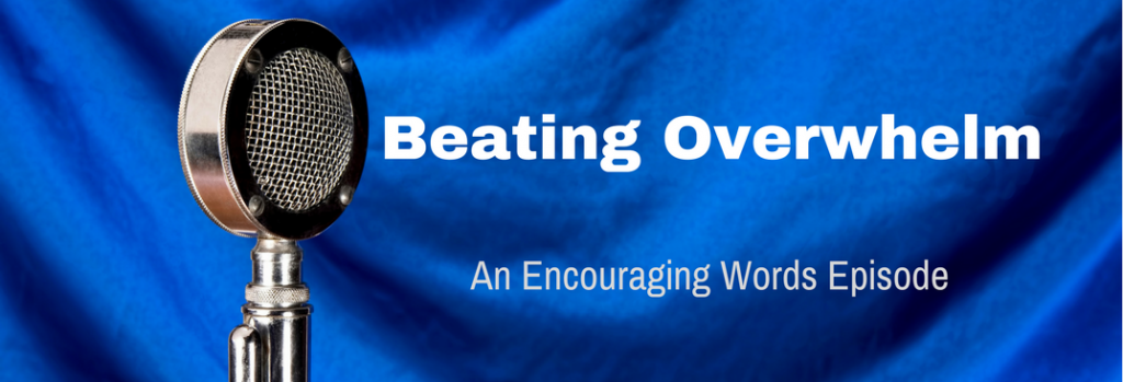 Episode 036E Beating Overwhelm