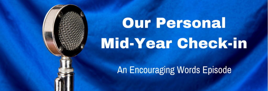 Episode 087E Our Personal Mid-Year Check-in